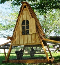 chicken coop for sale- good for 4 hens