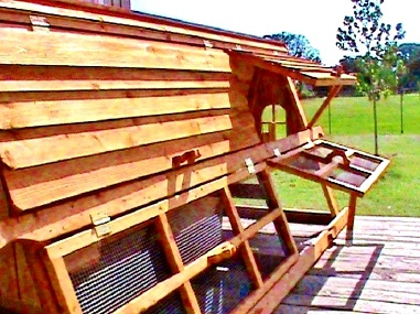 5 FEET TALL READY MADE CHICKEN COOP KIT
