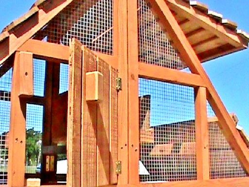 a portable chicken coop for 3-6 hens