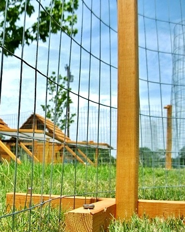 chicken coop and fence kit