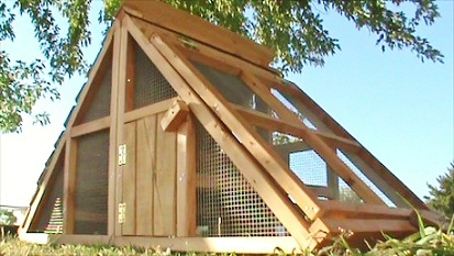 chicken coops and runs for sale in texas