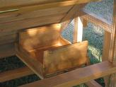 chicken coops with nest for 5-6 chickens
