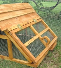Texas duck coop/house/shelter