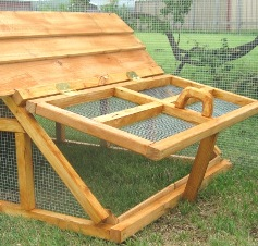 Taxas chicken/duck coops/house
