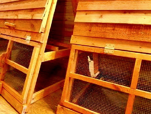 5 feet tall modular chicken coop