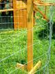 portable chicken fence