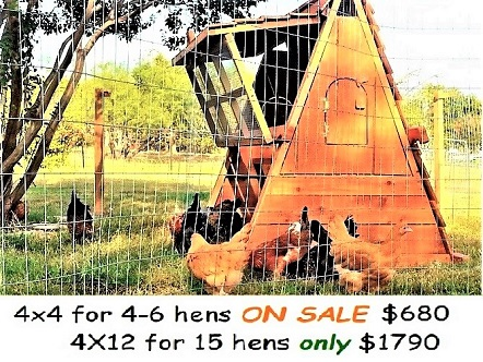 Best selling chicken coops in the year 2019