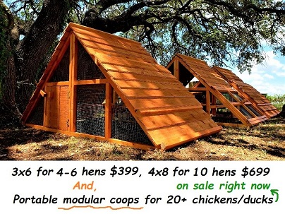 best sell chicken coop in the year 2019