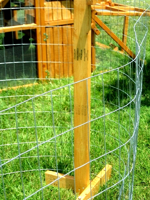 ready-made-chicken fence kit
