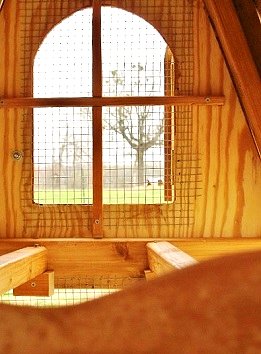 beautiful windows on our best chicken coop
