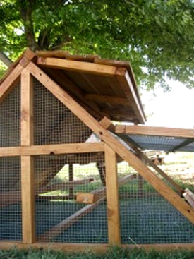 Texas free range chicken coops