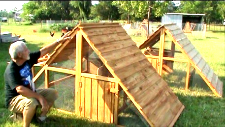 large chicken coops for sale