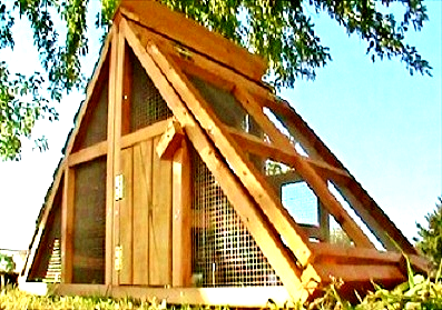 texas made small chicken coop on sale