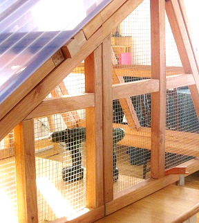 predator proof chicken coops/duck coops