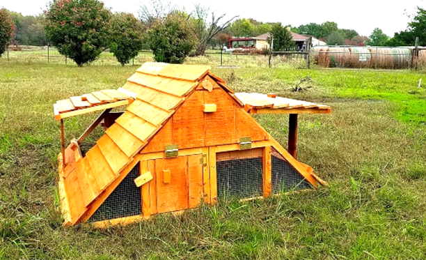 modular chicken coop for 10 or 20 and more chickens