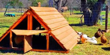 best ready made duck coop kit good for chicken coop kit too