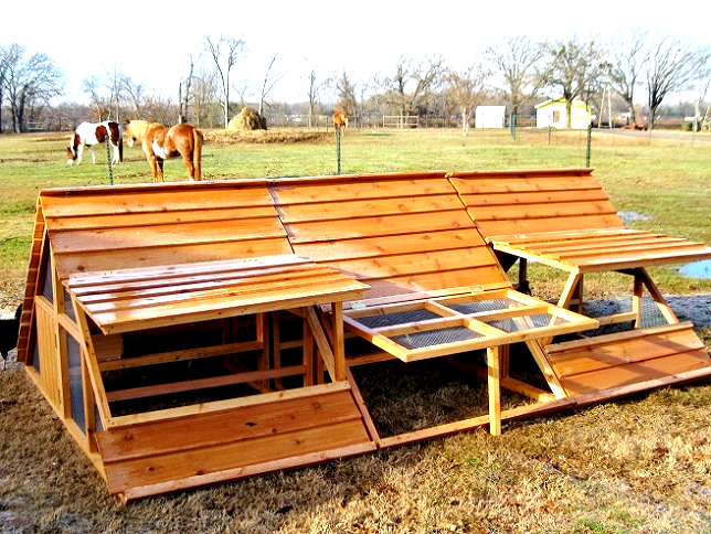 large texas made chicken coop