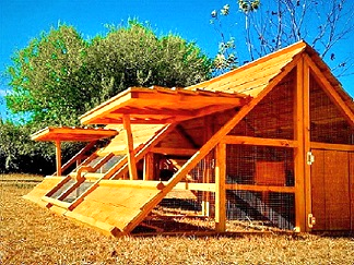 big chicken coop