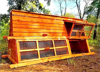beautiful large 5 feet tall chicken coop for 8-24 hens