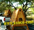 chicken coop delivery tx
