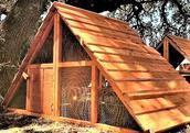 beautiful storm proof chicken coop ready made kit