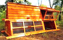 keep chicken safe easy use chicken coop deliver to your door