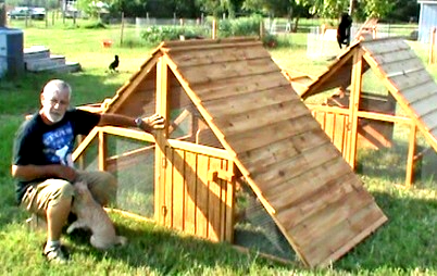 cheap and big chicken coop for sale