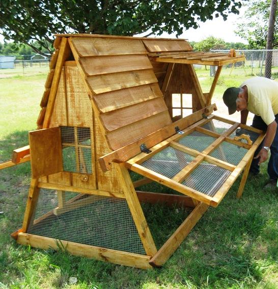 Chicken coop to build access chicken diy guides urban for Diy chicken coop